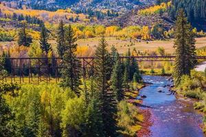 Colorado Fall Foliage by duallogic