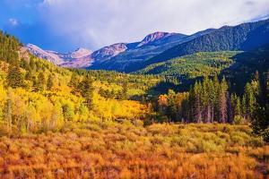 Scenic Aspen Lanscape by duallogic