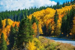 Scenic Fall Colorado Road by duallogic