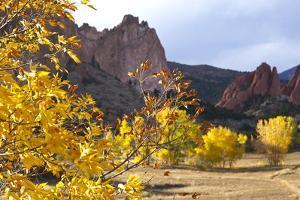 Yellow Colorado by duallogic