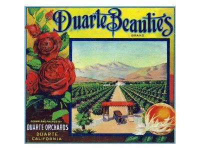 https://imgc.artprintimages.com/img/print/duarte-california-duarte-beauties-brand-citrus-label_u-l-q1goibx0.jpg?p=0
