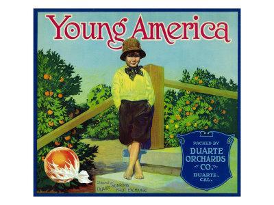 https://imgc.artprintimages.com/img/print/duarte-california-young-america-brand-citrus-label_u-l-q1gohjr0.jpg?p=0