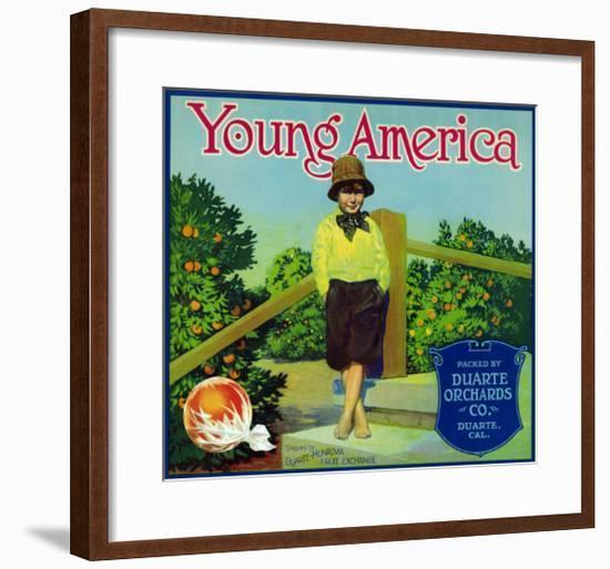 Duarte, California, Young America Brand Citrus Label-Lantern Press-Framed Art Print