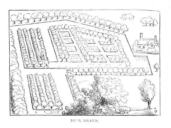 'Duck Island', c1870-Unknown-Giclee Print