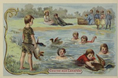 Duck Race--Giclee Print