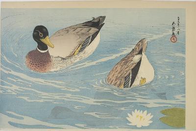 Ducks, August 1920-Goyo Hashiguchi-Giclee Print