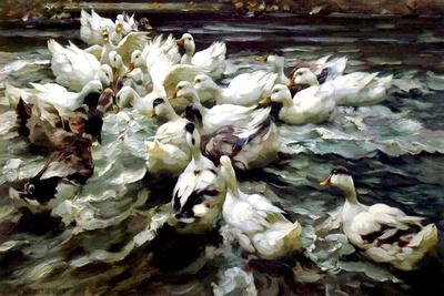 https://imgc.artprintimages.com/img/print/ducks-gathering_u-l-prczsl0.jpg?p=0