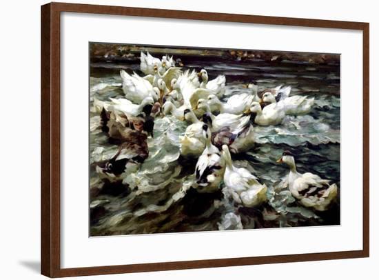 Ducks Gathering-Alexander Koester-Framed Giclee Print