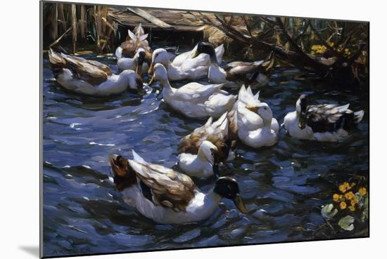 Ducks in the Reeds under the Boughs-Alexander Koester-Mounted Giclee Print