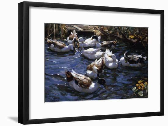 Ducks in the Reeds under the Boughs-Alexander Koester-Framed Giclee Print