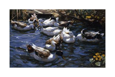 https://imgc.artprintimages.com/img/print/ducks-in-the-reeds-under-the-boughs_u-l-ppq19o0.jpg?p=0