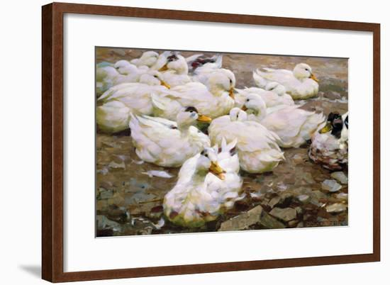 Ducks on a Pond-Alexander Koester-Framed Giclee Print