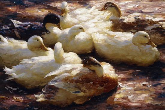 Ducks on a Riverbank-Alexander Koester-Giclee Print