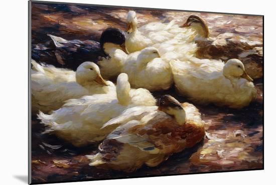 Ducks on a Riverbank-Alexander Koester-Mounted Giclee Print