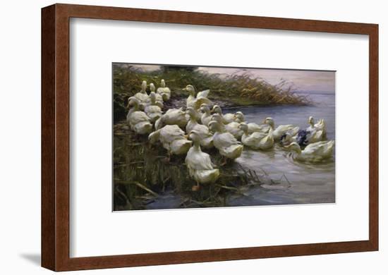 Ducks on the Lakeshore-Alexander Koester-Framed Giclee Print