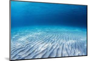 Underwater Shoot of an Infinite Sandy Sea Bottom with Clear Blue Water and Waves on its Surface by Dudarev Mikhail