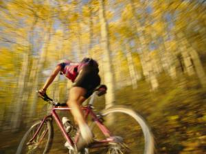 A Mountain Biker in Autumn by Dugald Bremner