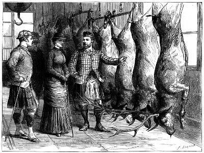 Duke of Fife's Game Larder, 1881-G Durand-Giclee Print