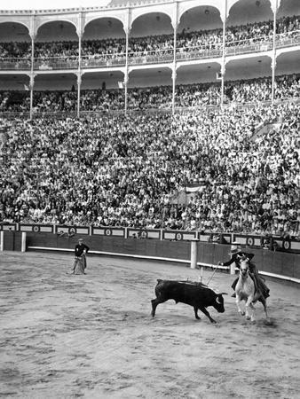 https://imgc.artprintimages.com/img/print/duke-of-pinohermoso-bullfighter-during-a-fight-in-madrid-s-bull-ring_u-l-q1e4cdq0.jpg?p=0