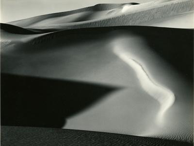 https://imgc.artprintimages.com/img/print/dune-1954_u-l-q1g6jvz0.jpg?p=0
