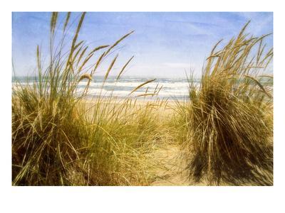 https://imgc.artprintimages.com/img/print/dune-grass-3_u-l-pigbs40.jpg?p=0