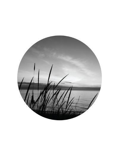 Dune Grass Circle-Jetty Printables-Art Print
