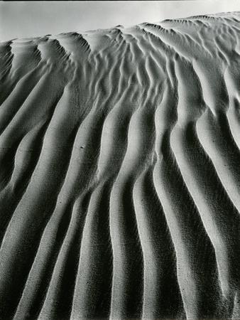 https://imgc.artprintimages.com/img/print/dune-oceano-1934_u-l-q1g6svx0.jpg?p=0