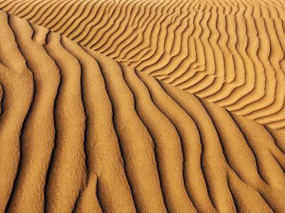 Dune structures-Frank Krahmer-Photographic Print