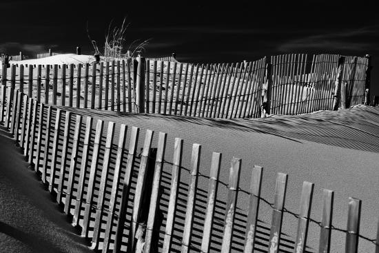 Dunes and Fences at Cape Henlopen State Park, on the Atlantic Coast in Delaware.-Jon Bilous-Photographic Print