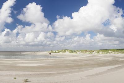 Dunes at a Beach, Sankt Peter Ording, Eiderstedt Peninsula, Schleswig Holstein, Germany, Europe-Markus Lange-Photographic Print