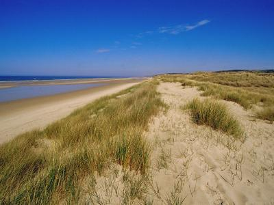 Dunes at Hardelot Plage, Near Boulogne, Pas-De-Calais, France, Europe-David Hughes-Photographic Print