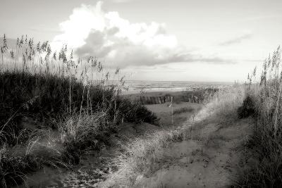 Dunes I BW-Alan Hausenflock-Photographic Print