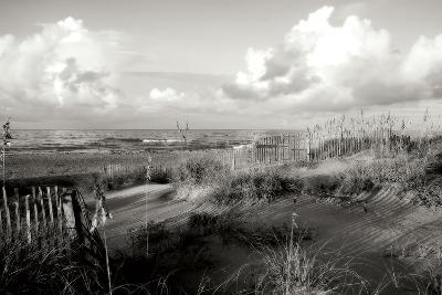 Dunes II BW-Alan Hausenflock-Photographic Print