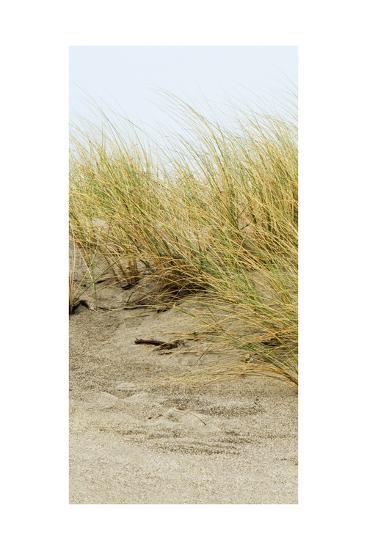 Dunes III-Rachel Perry-Art Print