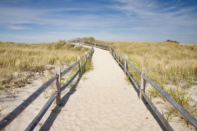 Dunes on Cape Cod National Sea Shore in Cape Cod, Boston, Usa--Photographic Print
