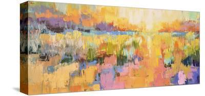 Dunes X-Kim McAninch-Stretched Canvas Print