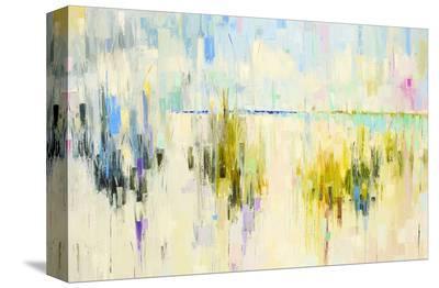Dunes XXIX-Kim McAninch-Stretched Canvas Print