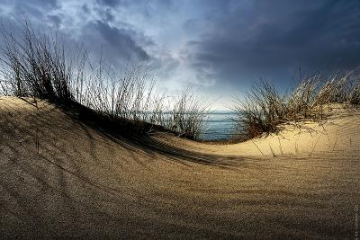 Dunes-Wim Schuurmans-Photographic Print