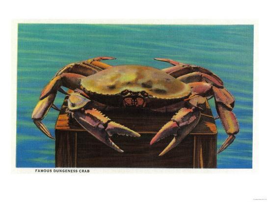 Dungeness Crab on Hood Canal - Hood Canal, WA-Lantern Press-Art Print