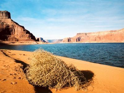 Dungeon Canyon, Lake Powell-James Denk-Photographic Print
