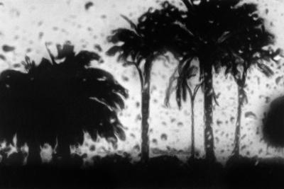 https://imgc.artprintimages.com/img/print/dunkle-oasen-2-2015_u-l-q1dwqk10.jpg?p=0