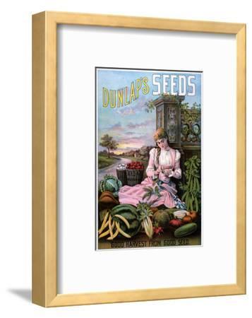 Dunlap's Seeds Nashua NH