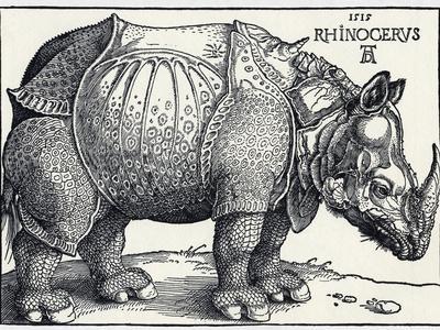 https://imgc.artprintimages.com/img/print/durer-s-rhinoceros-1515_u-l-pzi5s90.jpg?p=0