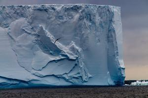 Closeup of a Gigantic Tabular Iceberg in the Weddell Sea around Sunset. Image Taken Enroute from Th by Durk Talsma