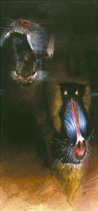 Baboon Scream by Durwood Coffey