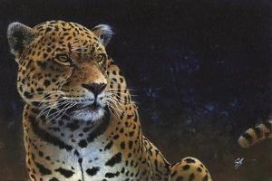 Jaguar by Durwood Coffey