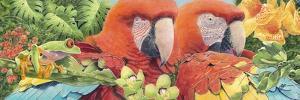 Scarlet Macaws by Durwood Coffey