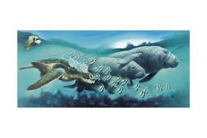 Sirens 'A Sea by Durwood Coffey