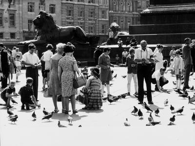 Tourists in Trafalgar Square to Feed the Pigeons, London