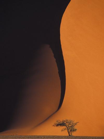 Dusk Falls on Soussevlei Sand Dunes, Namibia-Darrell Gulin-Photographic Print
